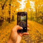 instagram cresce e marcas ja apostam em branding e vendas